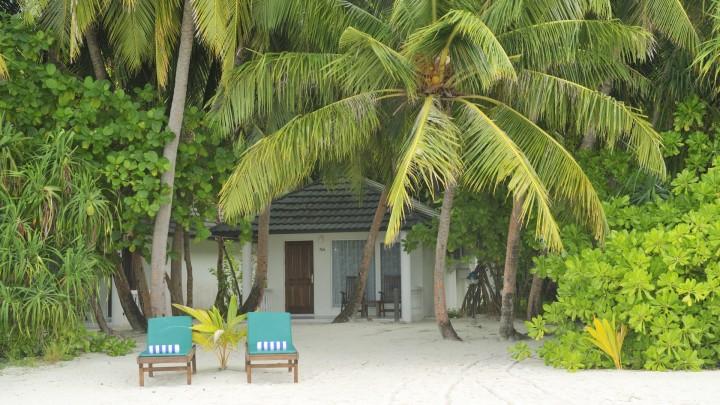 holiday maldive