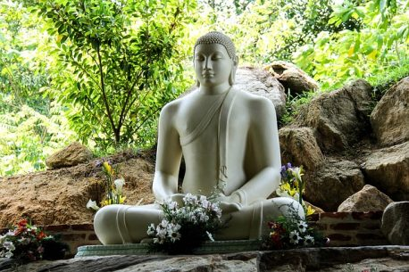 Tour in Sri Lanka