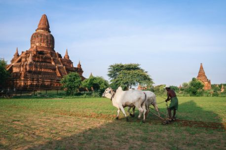Tour del Myanmar e della Cambogia
