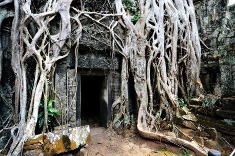 tour Cambogia e Laos
