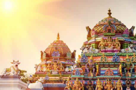 viaggio Kerala Laccadive